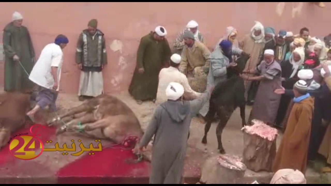 بالفيديو: فقراء اداولتيت بزاوية سيدي احماد اوموسى