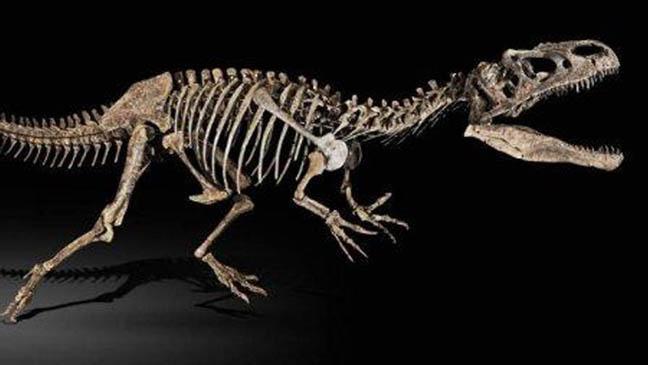 فرنسا تلغي مزاد بيع هيكل الديناصور المسروق من المغرب