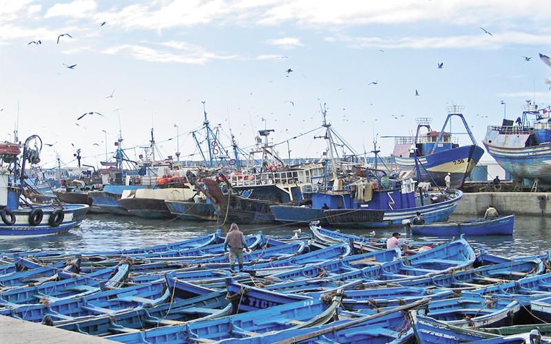 10 أعضاء من أصل 35 عضوا صوتوا على التقرير المالي لغرفة الصيد البحري بأكادير