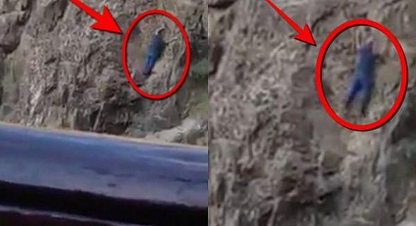 بالفيديو : مواطن يوثق بعدسة هاتفه حادث سقوط رجل من فوق جبل اوريكا بمراكش