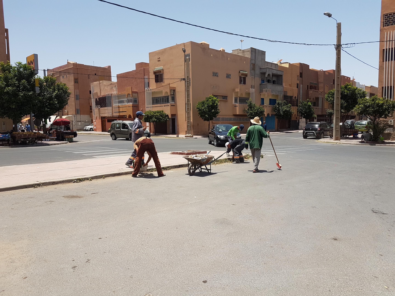 بالصور : حملة نظافة بحي ودادية الموظفين
