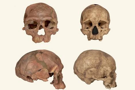 """اكتشاف أقدم """"إنسان عاقل"""" بجبل إيغود باليوسفية"""
