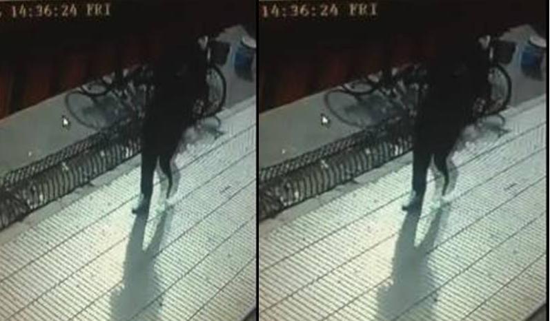 كاميرا مراقبة ترصد لص يسرق دراجة أمام مسجد السنة بتيزنيت