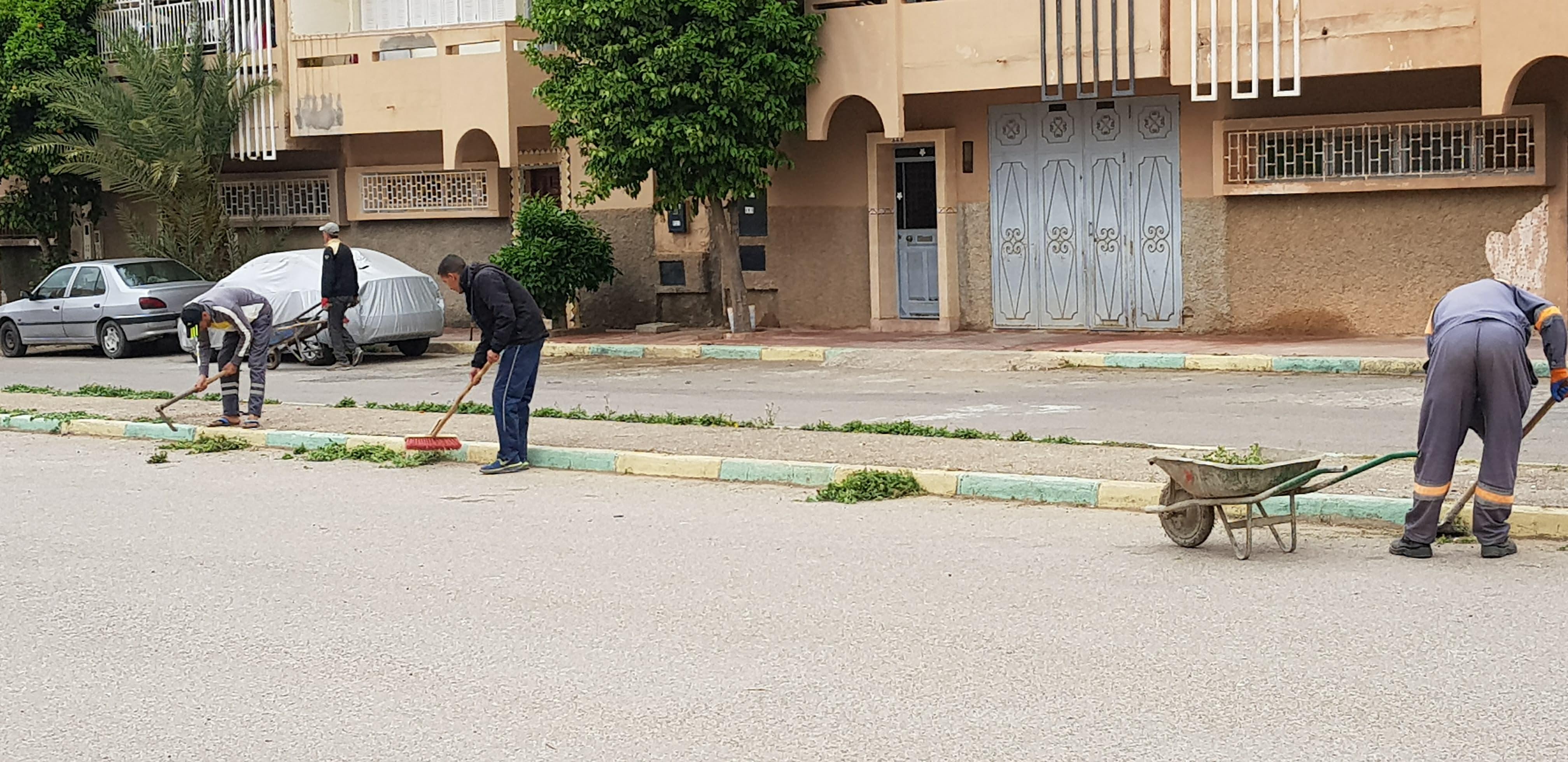 بالصور: حملة نظافة و مشروع مبادرة أفكار الشباب بحي ودادية الموظفين