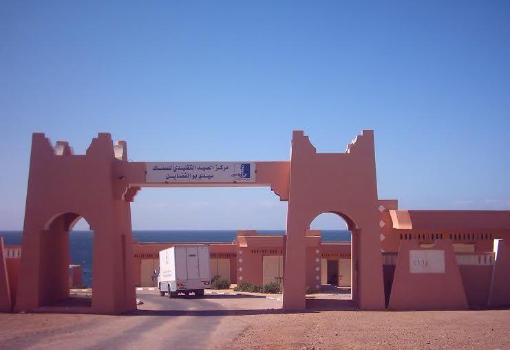 """وزارة الصيد: صدفيات """"سيدي بولفضايل"""" سامة ويمنع تسويقها"""