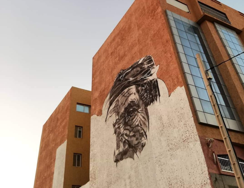 بالصور : جداريات عملاقة لأول مرة بمدينة تيزنيت